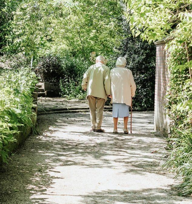 Elderly and Alzheimer's and Nursing Homes